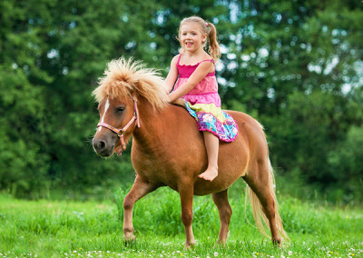 Erlebnispädagogische Ponyschule