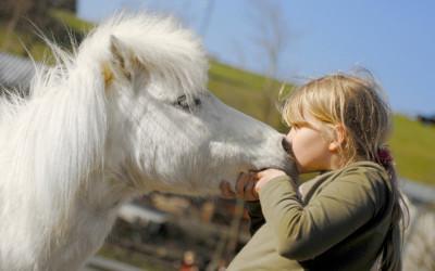 Kurzzeittherapie- Logopädie mit dem Pferd