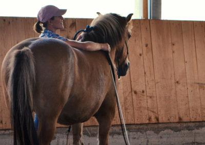 MKA- Natural Horsemanship Bodenarbeit